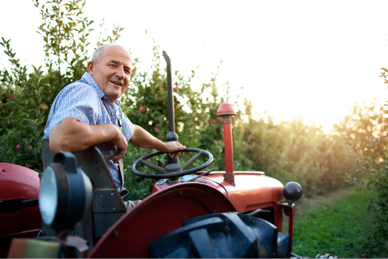 portrait-of-senior-man-farmer-driving-his-old-retro-styled-tractor-machine-through-apple-fruit-orchard-in-sunset 2